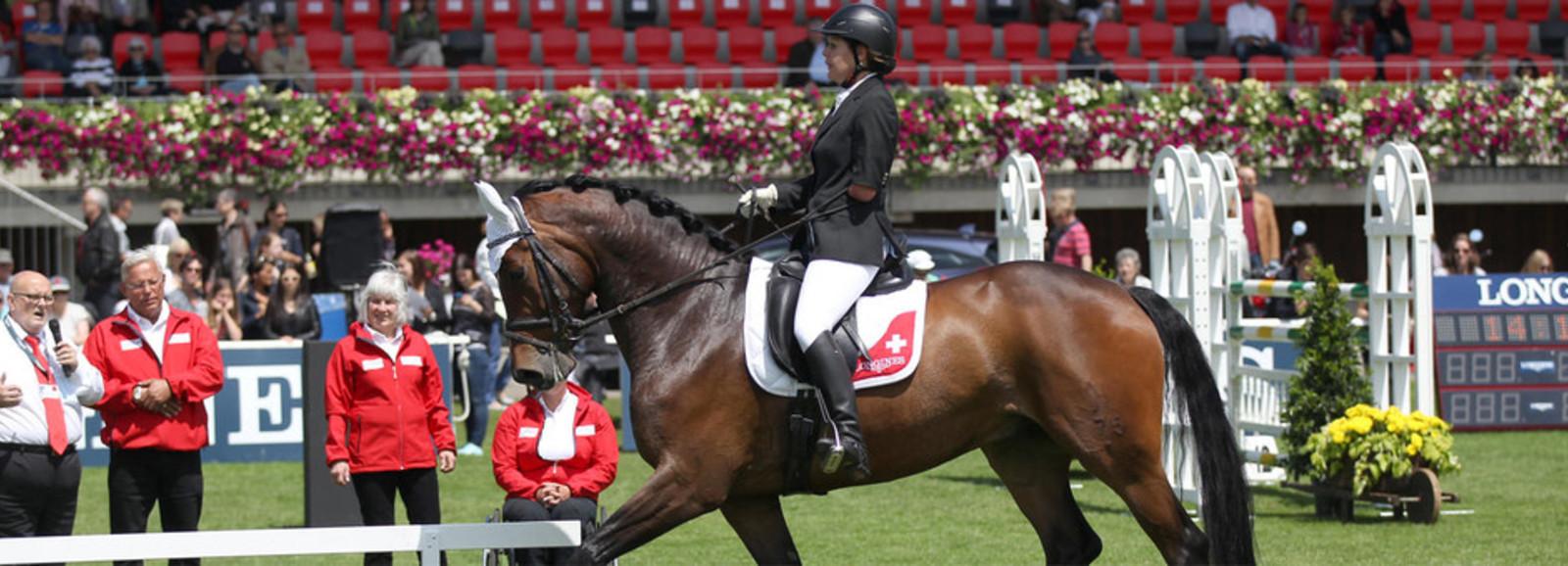 Para-Equestrian